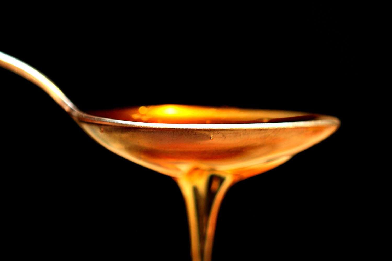 Le miel est fabriqué par les abeilles à partir du nectar des plantes qu'elles butinent. Suite à des réactions chimiques qui, notamment, séparent le saccharose en fructose et glucose, le miel est ventilé par des ouvrières spécialisées pour être déshydraté. Cette source de nourriture se conserve très longtemps car les bactéries ne peuvent s'y développer. C'est aussi pour cette propriété qu'on l'utilise comme antibiotique. © Blentley, Fotopédia, cc by nc 2.0