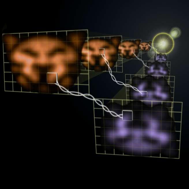 Les images conjuguées obtenues par la technique de mélange à 4 ondes et les pixels conjugués indiqués par les carrés. Notez la modifaction des couleurs induite par le dispositif d'intrication. Crédit : Vincent Boyer/JQI
