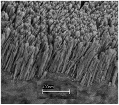 Une image prise au microspoce électronique des nanobarreaux en cuivre. Crédit : Rensselaer Inst./Koratkar