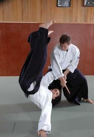 L'aïkido est un art martial qui permet de maîtriser le stress et de travailler l'endurance physique. © FFAAA