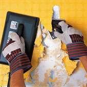 Décollage obligatoire avant pose d'une toile de verre sur des plaques de plâtre - Crédit : Castorama