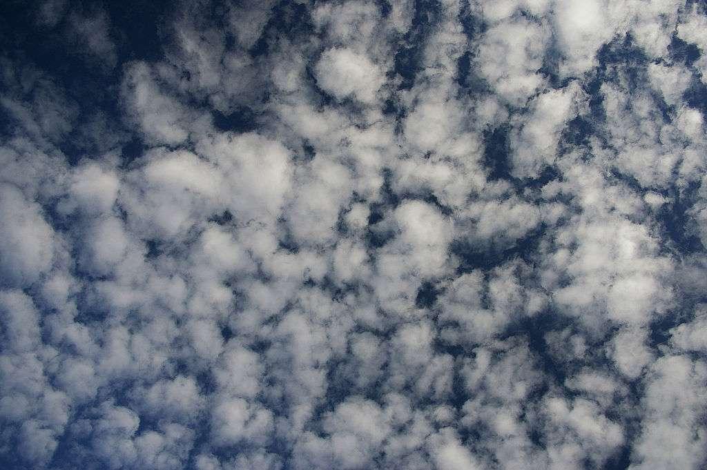 Les altocumulus se forment lorsque l'air est relativement instable. © Bidgee, Wikipédia, CC by-sa 3.0