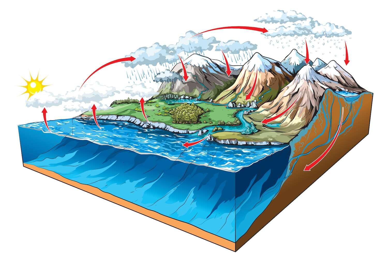 Le cycle de l'eau, ici sur ce schéma, désigne le parcours de l'eau, sous différentes formes, entre les grands réservoirs de la nature que sont, par exemple, les océans, les nappes phréatiques ou l'atmosphère. © NoPainNoGain, Shutterstock