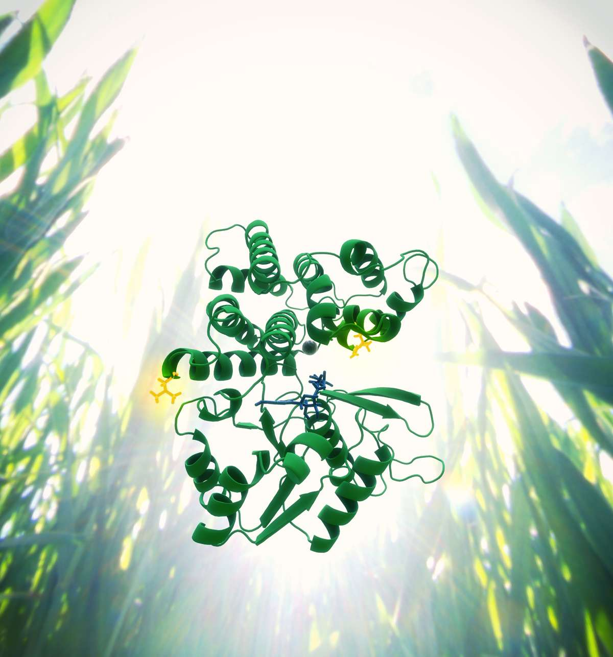Un gène mutant, représenté ici sous la forme protéique, permet d'améliorer le rendement de la bactérie Clostridium thermocellum pour la synthèse d'éthanol. © T. Splettstoesser, scistyle.com, DR