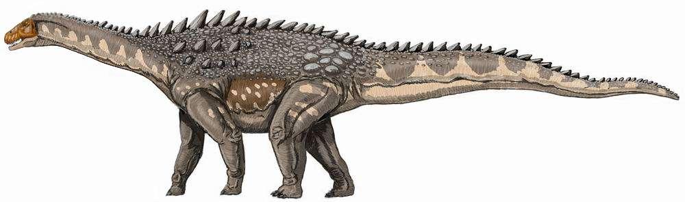 Les titanosaures, tel cet ampelosaure, étaient des dinosaures sauropodes. Ce groupe d'herbivores comprenait notamment l'argentinosaure, donc un reptile pesant 60 à 80 t et mesurant entre 30 et 40 m de long. © D. Bogdanov, Wikimedia commons, DP