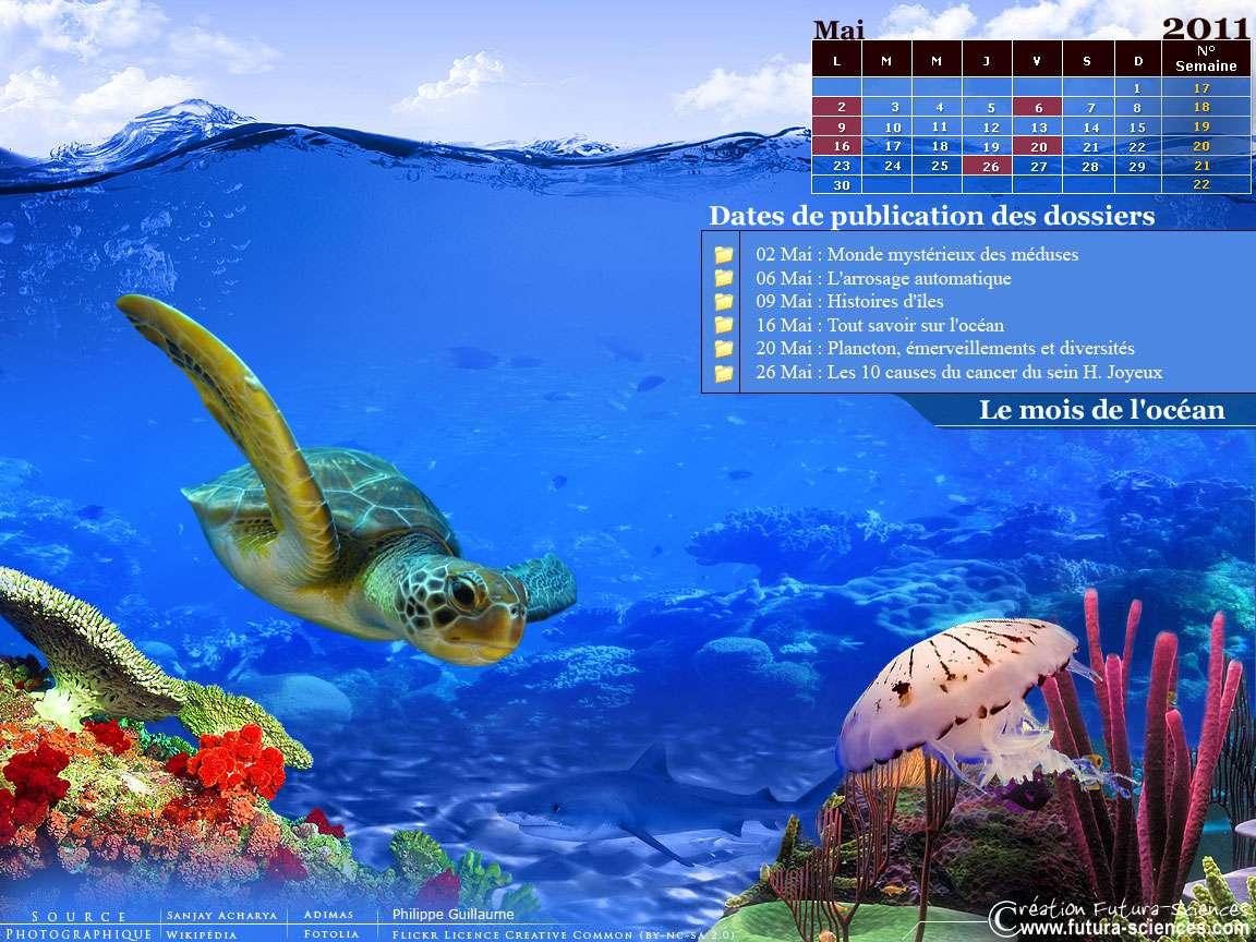 Retrouvez les dossiers du mois de mai dans le calendrier Futura-Sciences. © Futura-Sciences
