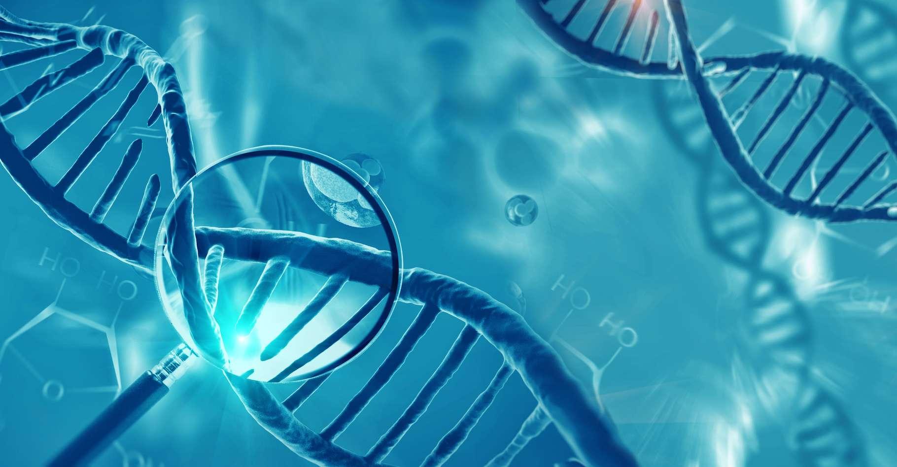 Comment se replie l'ARN pour prendre sa forme finale ? © Giovanni Cancemi, Adobe Stock