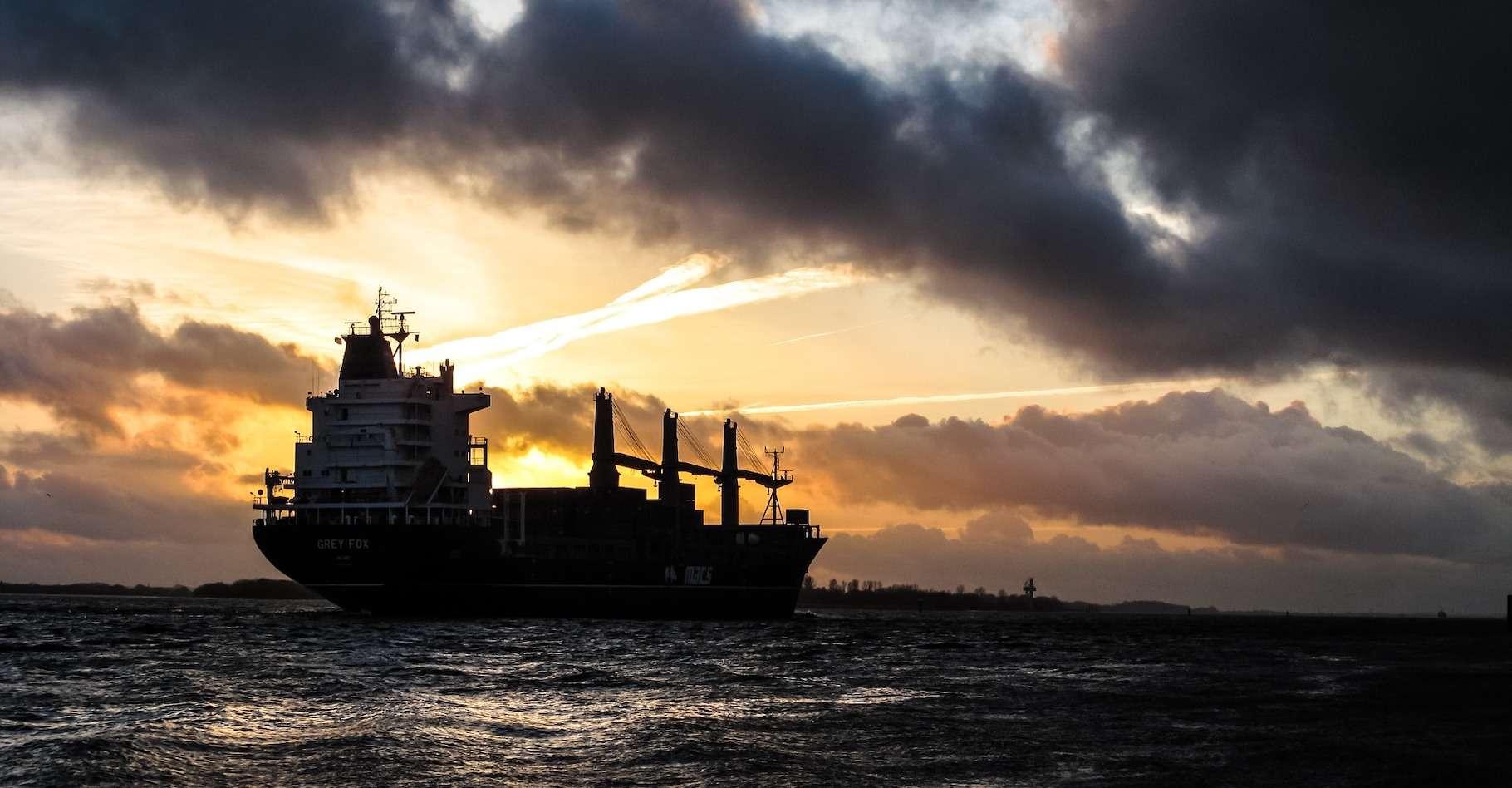 Les hydrocarbures qui se déversent sur les côtes du Brésil depuis un mois pourraient avoir été déversés depuis un pétrolier croisant au large du pays. © Free-photos, Pixabay License