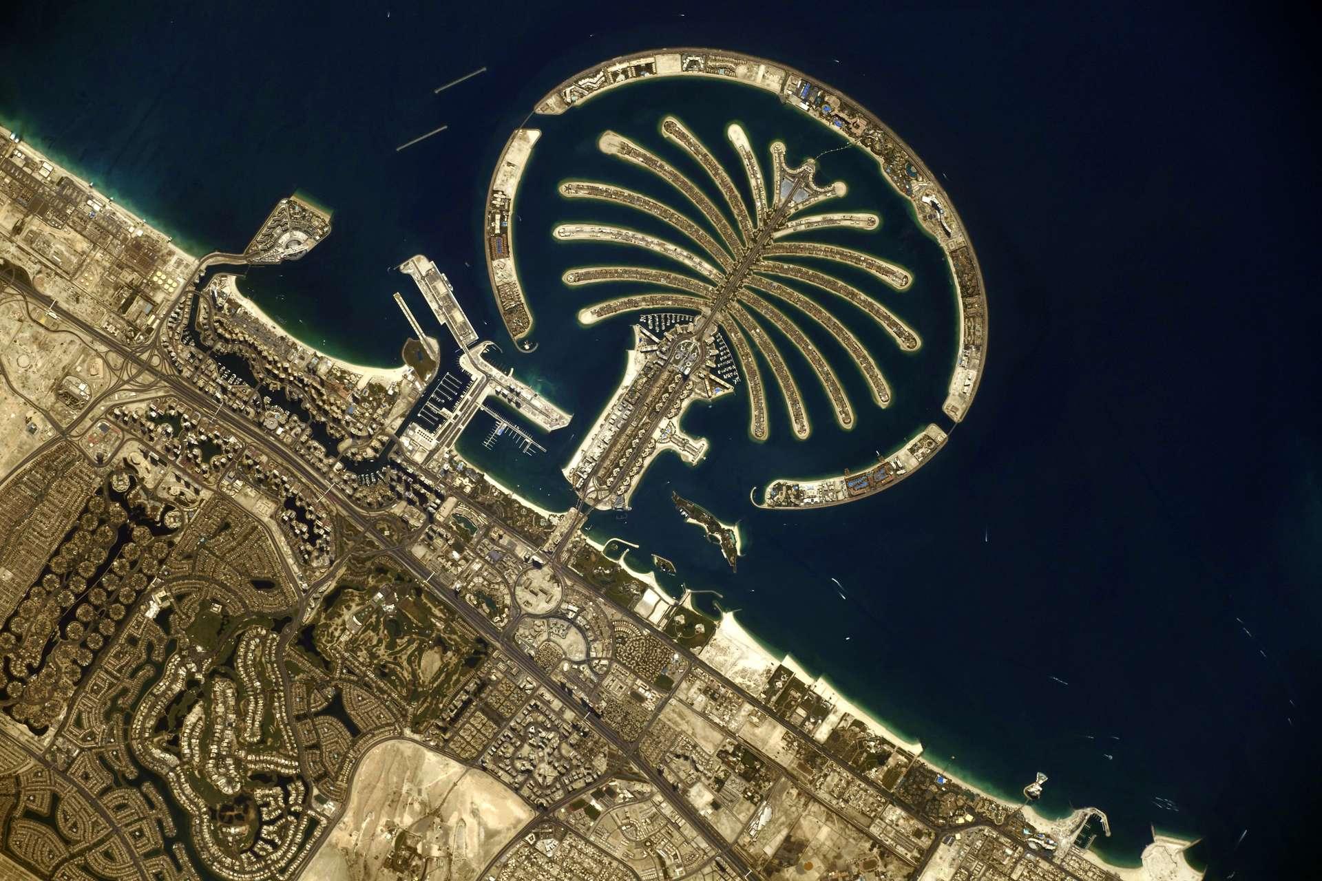 L'île « Palm Jumeirah », située dans le golfe Persique, sur les côtes de l'émirat de Dubaï. Photographiée par l'astronaute français, en 2021. © ESA/Nasa, T. Pesquet