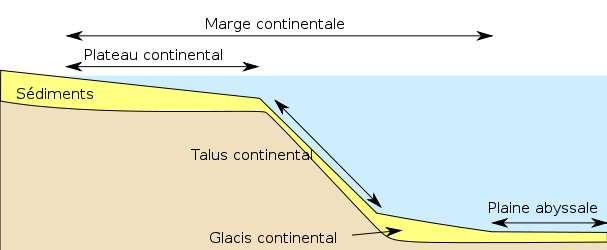 La zone néritique s'étend au-dessus du plateau continental, jusqu'à la rupture de pente du talus continental. © D'après Pline, modifié par Jmtrivial, Wikimedia Licence Art libre