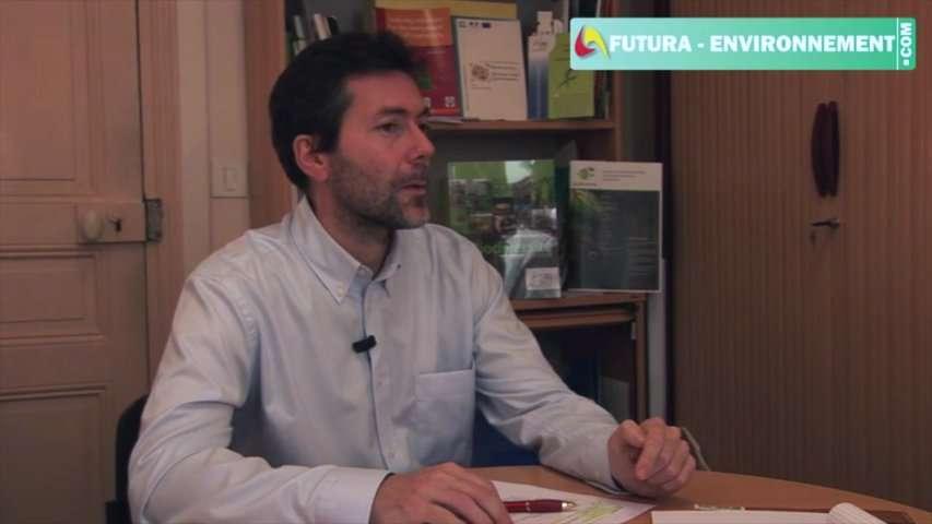 Interview : le rôle de l'Homme sur la biodiversité végétale
