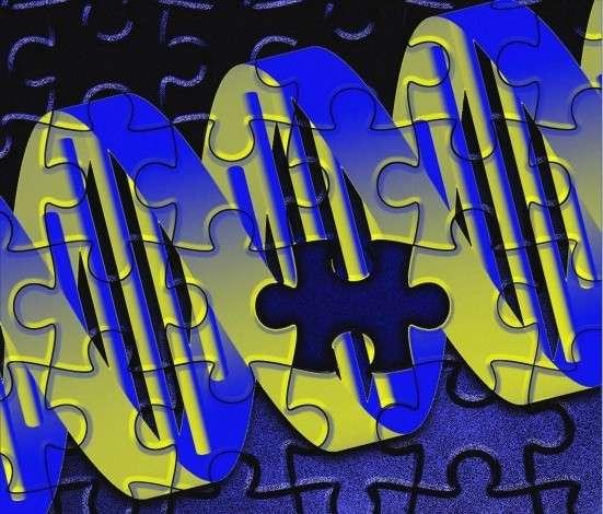 Le Téléthon vise à récolter des fonds contre les maladies rares, des maladies génétiques dues souvent à une mutation au sein d'un gène. Depuis 1987, de nombreux progrès ont été faits mais la lutte est loin d'être gagnée. Des moyens supplémentaires sont nécessaires. © Adrian Cousins, Wellcome Images, cc by nc nd 2.0