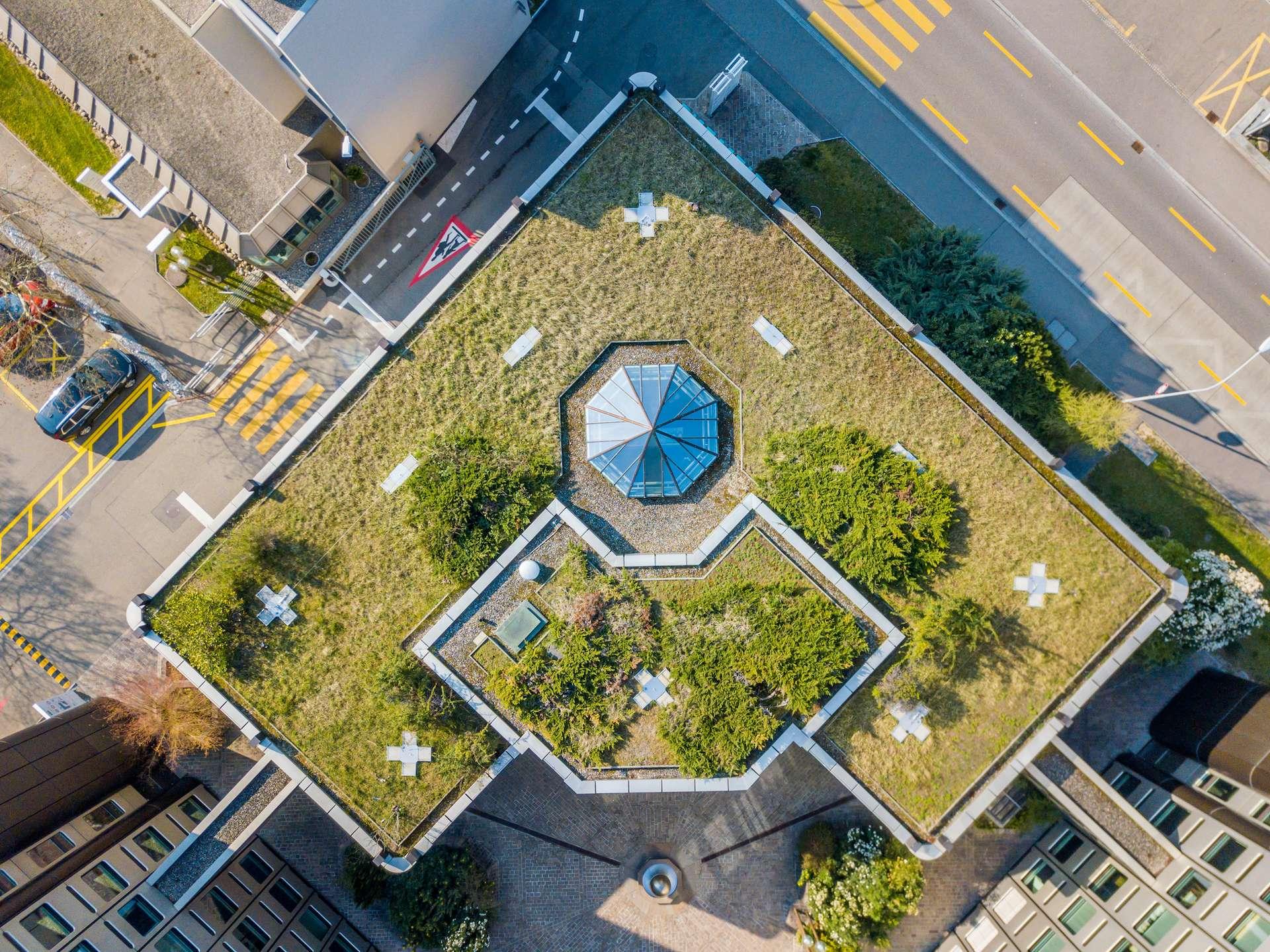 Legumes A Mettre Dans Le Jardin les jardins urbains pourraient couvrir 15 % des besoins en