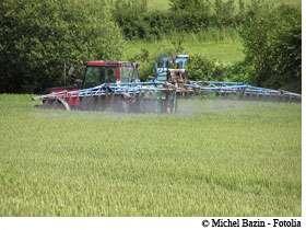 Les pesticides, des produits actifs et pas seulement sur les insectes. © Michel Bazin / Fotolia
