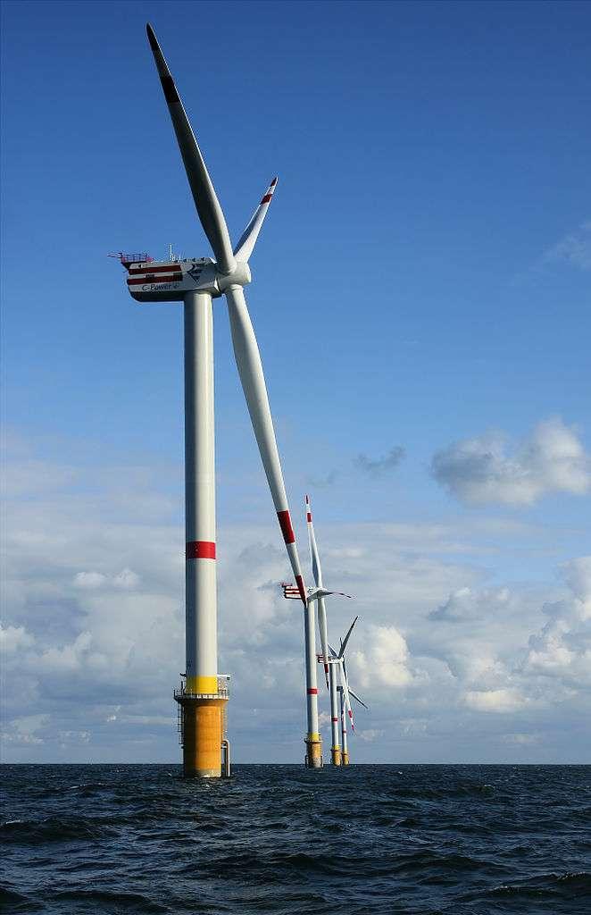 Éoliennes D4 (au premier plan) à D1 (en arrière-plan) sur le banc Thornton, à 28 km de la côte belge, dans la mer du Nord. Ces éoliennes mesurent 157 m de haut (plus les pales), soit 184 m au-dessus des fonds marins sur lesquels elles reposent. © Hans Hillewaert, Wikipédia, cc by sa-3.0