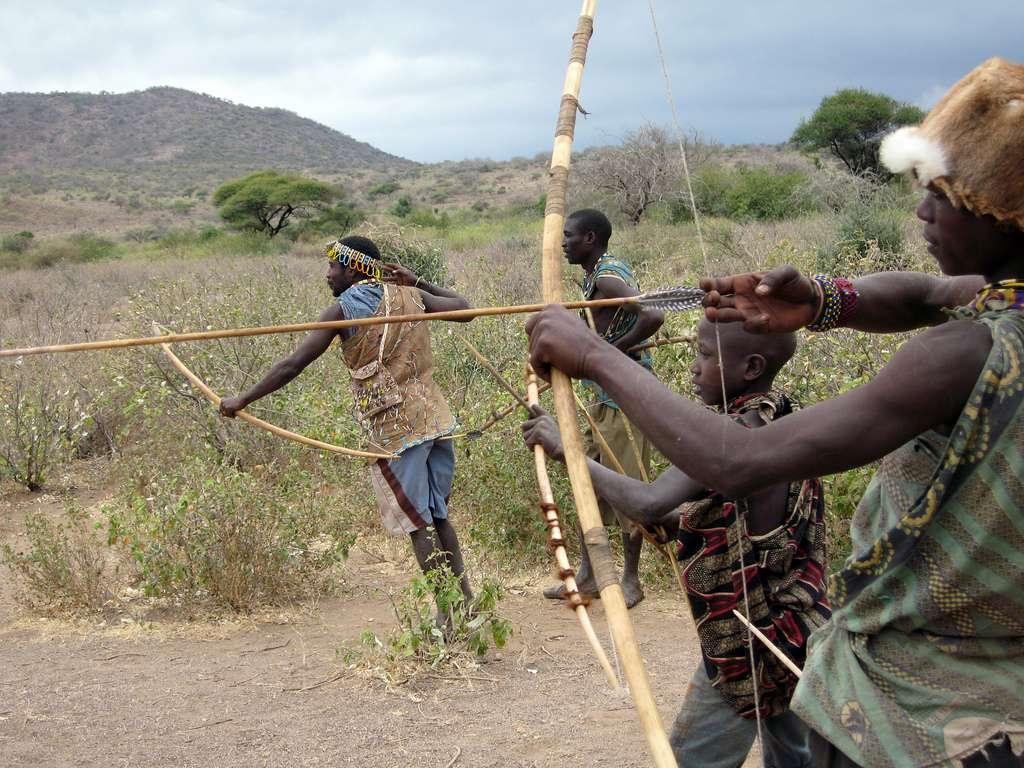 Le peuple hadza est l'un des derniers peuples africains à vivre encore de la chasse et de la cueillette. Un mode de vie qui change leur flore intestinale et qui nous poussent à revoir quelles sont les bonnes et les mauvaises bactéries commensales. © Woodlouse, Flickr, cc by sa 2.0