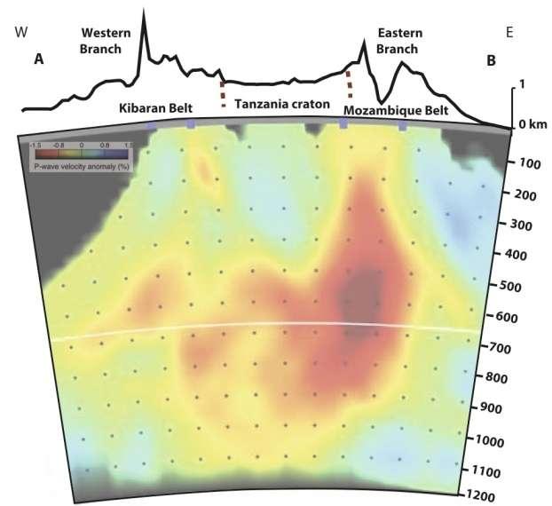 Tomographie sismique est-ouest correspondant au pointillé noir de la carte. Les roches chaudes du manteau sont en rouge orangé, les roches plus froides en bleu. Les roches chaudes du manteau contournent le craton de Tanzanie, elles sont plus abondantes à l'est qu'à l'ouest du craton. © Koptev et al., Nature Geoscience