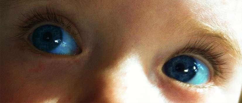 Dans le regard des bébés se cachent peut-être les indices permettant de détecter l'autisme de façon plus précoce. Cette pathologie concerne environ une naissance sur 88 aux États-Unis. © www.moneyticketpassport.com, Flickr, cc by nd 2.0