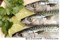 Les poissons gras sont une meilleure source d'omégas-3 que des médicaments fabriqués avec des huiles de poisson. © D. Ducouret, Fotolia