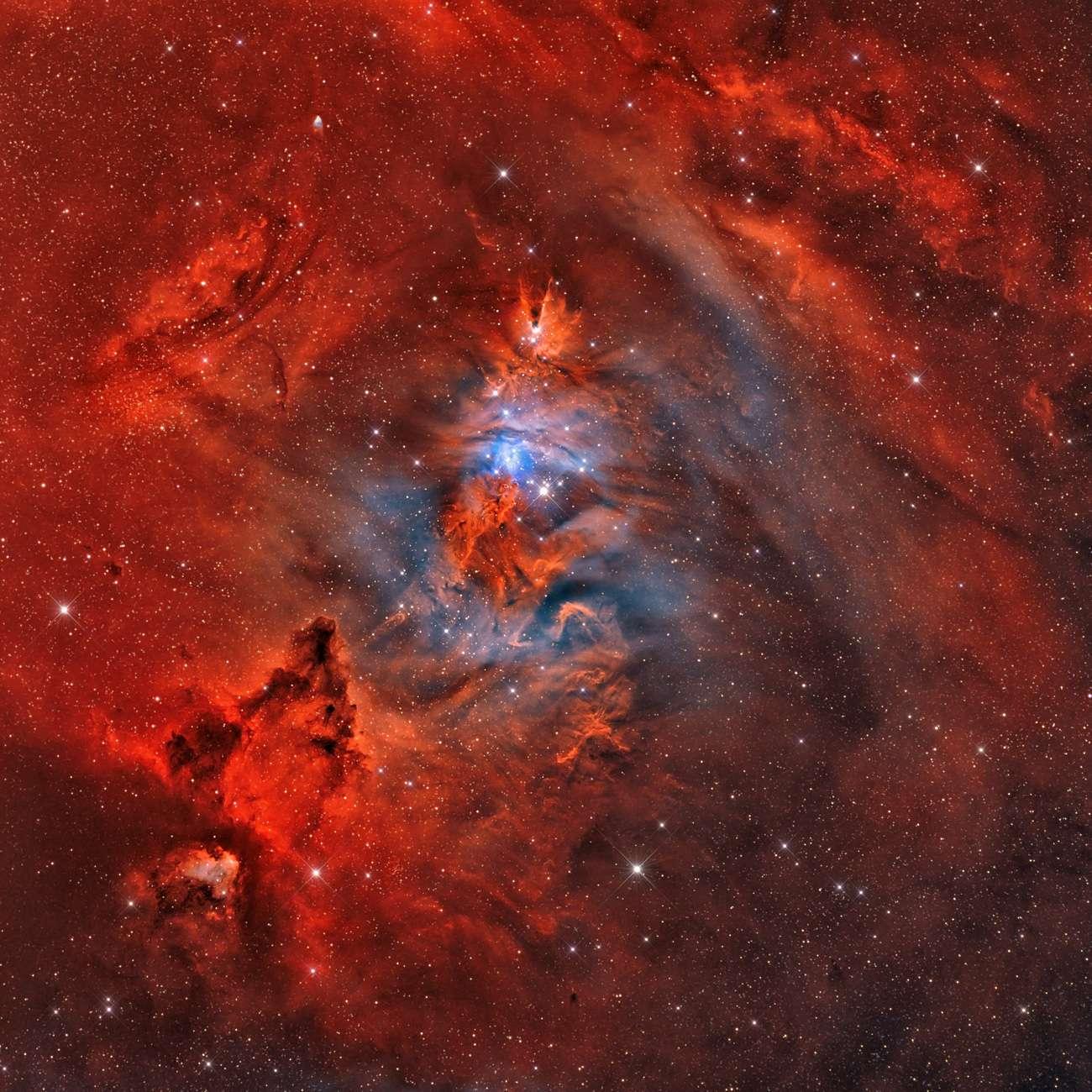 NGC 2264, la nébuleuse du Cône, révèle toute sa beauté et la richesse de ses couleurs sur cette superbe image représentant 14 heures de poses photographiques. © Rolf Geissinger