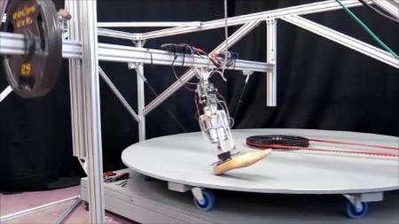 Pour tester la mobilité de leur prothèse, les chercheurs de l'université du Michigan ont conçu un tapis roulant circulaire qui leur permet de simuler les contraintes qui s'exercent sur une cheville lorsqu'un marcheur doit tourner. © Michigan Technological University