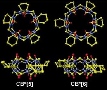 Avec sa forme ronde, la cucurbiturile évoque paraît-il la citrouille. Cette molécule sert parfois de conteneur pour le transport de molécules. Mais elle peut aussi s'assembler en sphères. Crédit : Kimoon Kim et al.