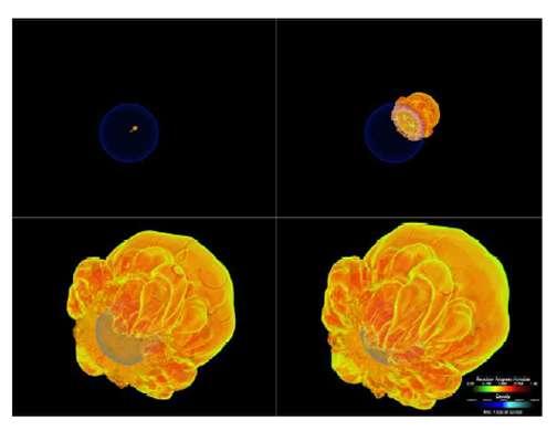 Les étapes de la propagation du front de combustion lié à la déflagration dans la naine blanche. Crédit : Center for Astrophysical Thermonuclear Flashes