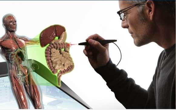 La médecine est l'un des nombreux domaines professionnels auxquels s'adresse le kit zSpace. Chercheurs, chirurgiens ou encore radiologistes peuvent s'en servir pour observer les organes en 3D avec une précision et un réalisme inédits. © Infinite Z