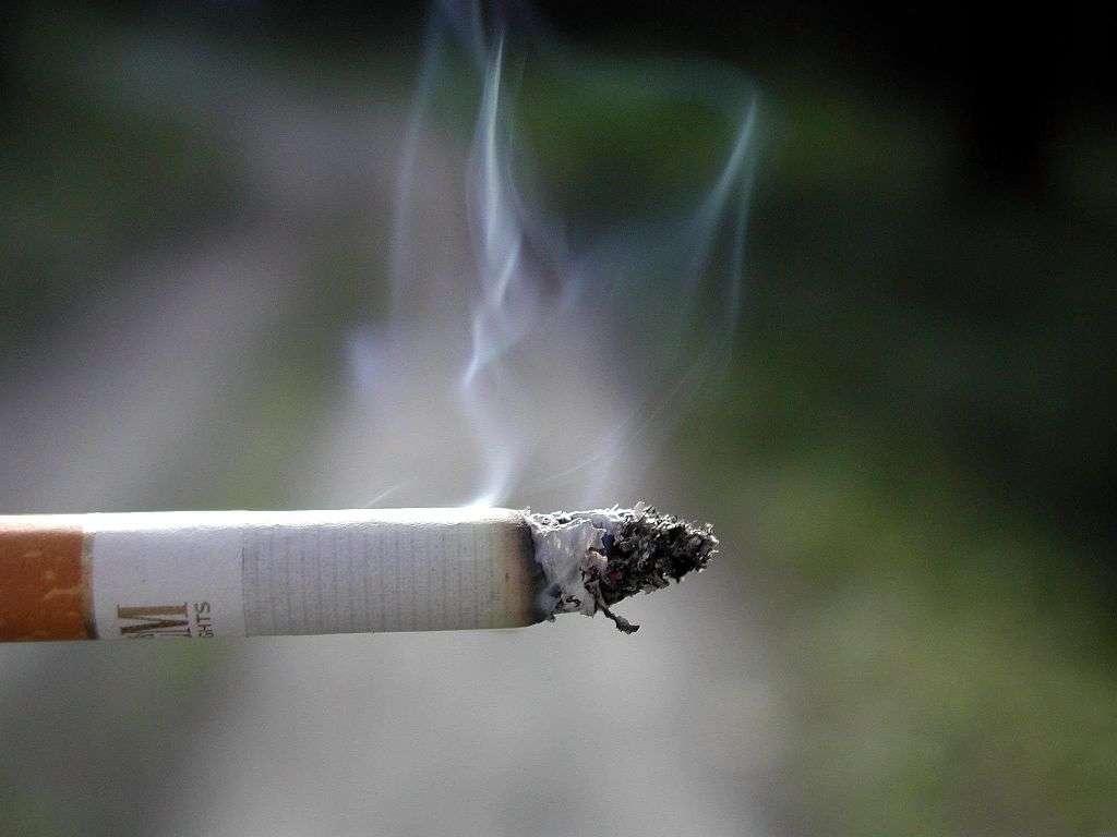 Le tabac fait des ravages chez le fumeur, mais aussi sur son entourage. Et les enfants asthmatiques, déjà fragilisés au niveau respiratoire, développent une sensibilité plus grande au tabagisme passif. La fumée de cigarette contient plusieurs milliers de substances chimiques, dont certaines directement nocives pour les bronches. © Cigarette smoking by Paolo Neo