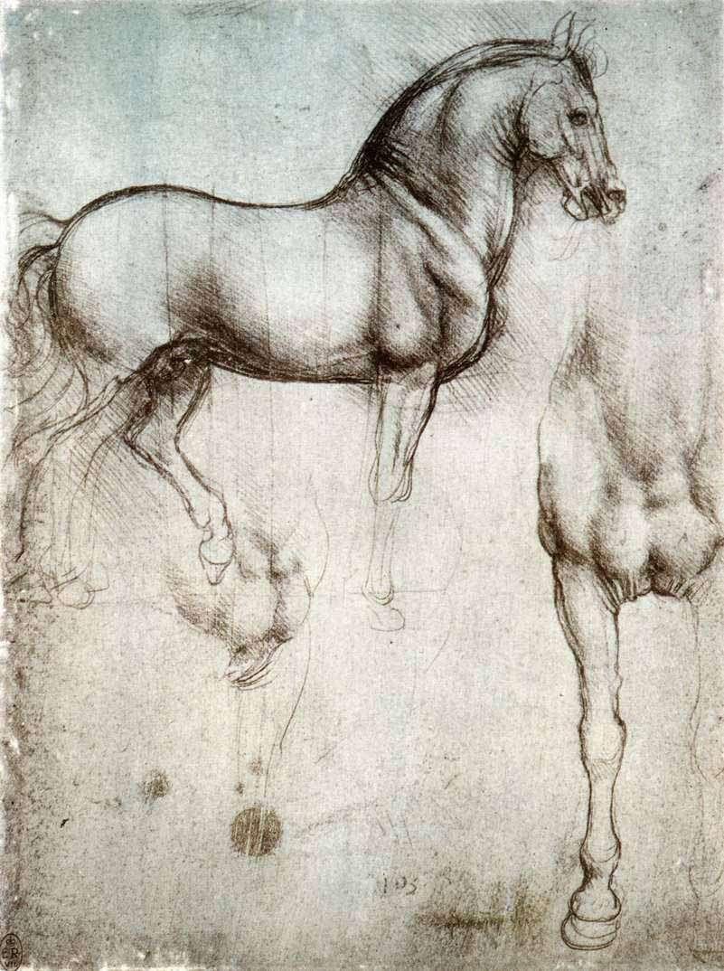 Etude du cheval, par Léonard de Vinci. Source Commons