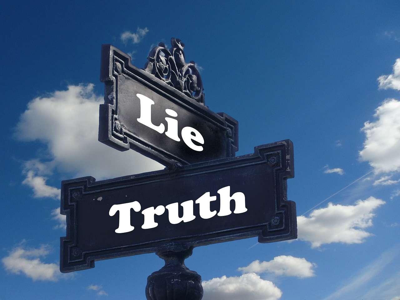 Détecter le mensonge n'est pas toujours une tâche aisée et nous le faisons mal lorsque nous y réfléchissons. En revanche, notre subconscient nous aide bien mieux à saisir la vérité. © Geralt, www.pixabay.com, DP