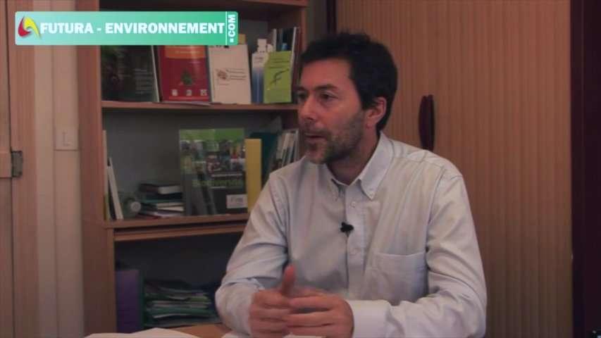 Interview : la biodiversité, un compte rendu du vivant