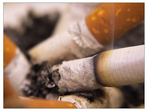 En 2006, près de 37.000 décès par cancer étaient imputables à une consommation de tabac. © Lionoche, Flickr CC By Nc-Nd 2.0