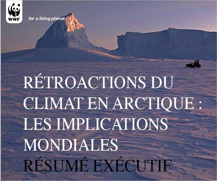 Le rapport (Les rétroactions du climat en Arctique : implications mondiales), publié par le WWF.