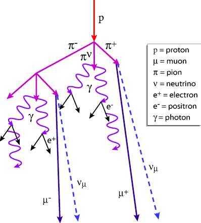 Schéma montrant la complexité des réactions générant des particules secondaires lorsqu'un rayon cosmique, ici un proton, entre en collision avec un noyau. Crédit : Los Alamos National Laboratory