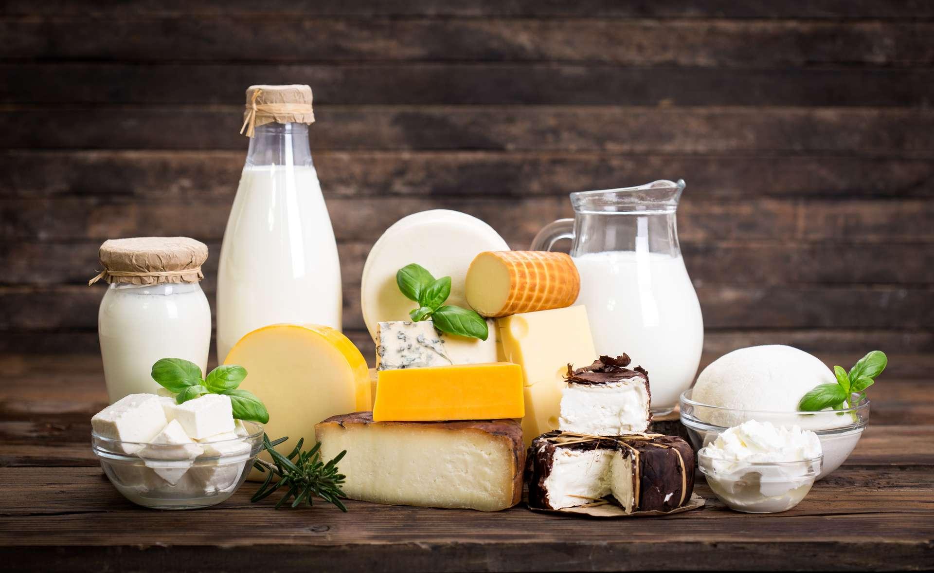 Les produits laitiers sont neutres pour la vie