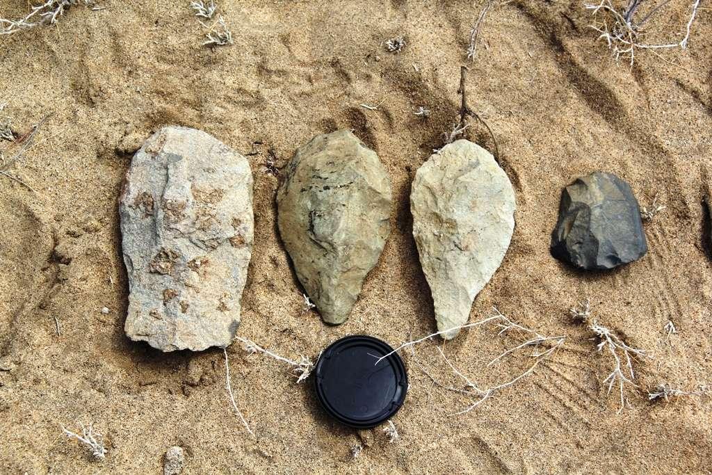 Lors de « l'école de terrain 2013 », organisée par le Turkana Basin Institute, les étudiants ont pu découvrir quelques produits de l'industrie lithique de l'Acheuléen comme ce hachereau (à gauche) et ces deux bifaces. Dans cette même région, non loin du lac Turkana, des archéologues ont récemment découvert des outils encore bien plus anciens que ceux présentés sur cette photo. © Turkana Basin Institute