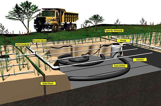 Le lagunage naturel individuel est une solution d'assainissement autonome des eaux usées très écologique. © Lloyd Roz, Wikimedia Commons, cc by sa 3.0