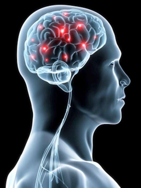 Le cerveau humain et son amélioration est probablement l'un des grands défis de la science du XXIe siècle. © Mind Nutrition