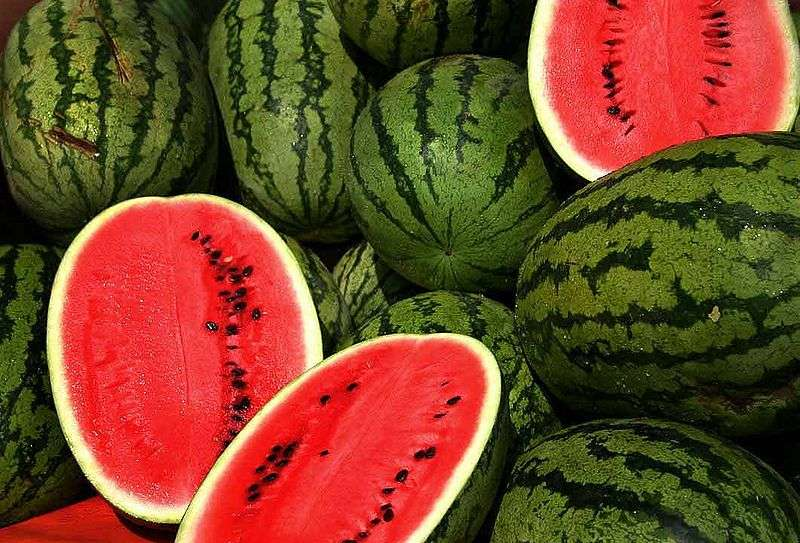 La pastèque, ou melon d'eau, est appréciée en été pour sa teneur en eau. © Steve Evans, cc-by-2.0