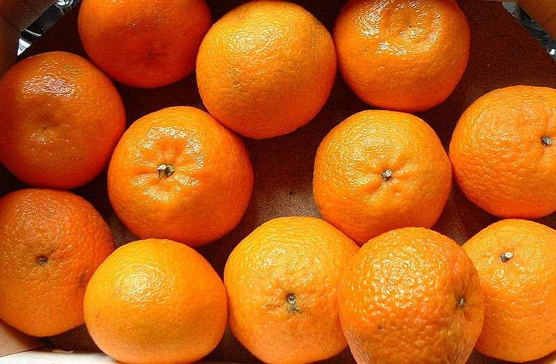 Les clémentines sont des fruits gorgés de vitamine C. © Wikimedia Commons