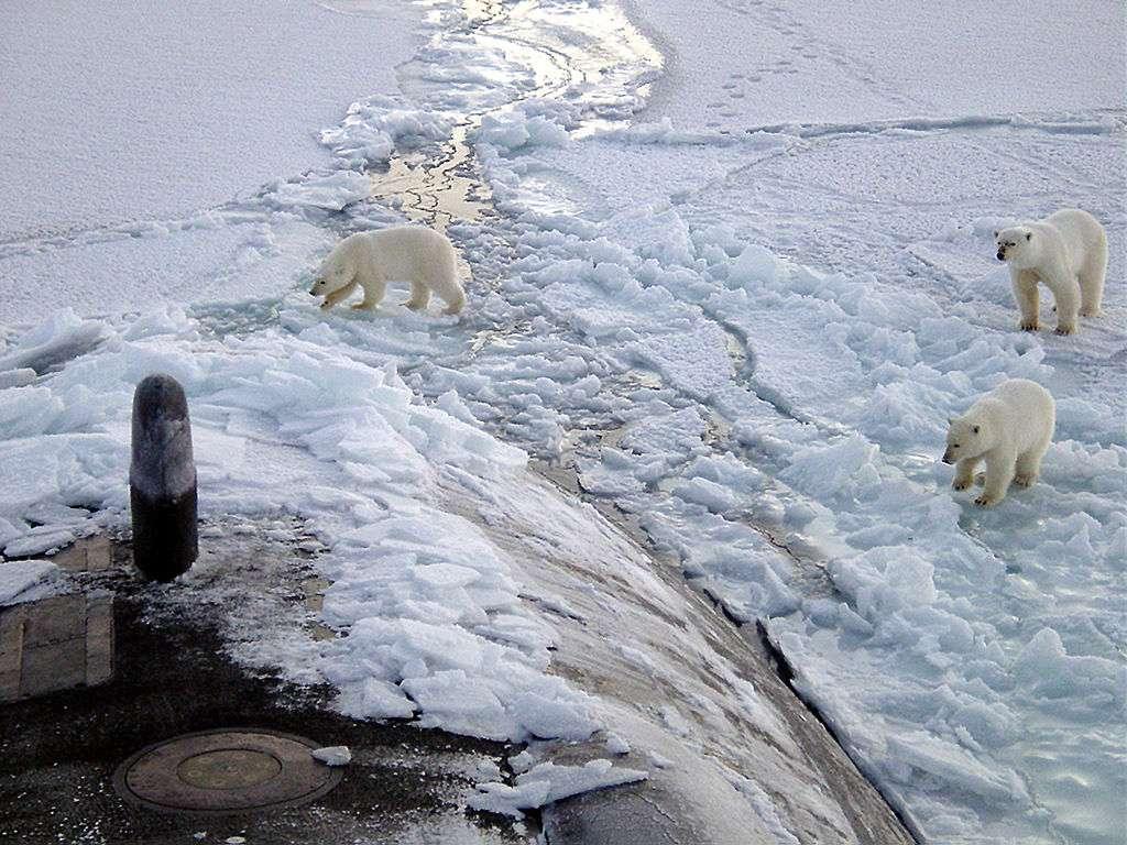 En Arctique, il existe peu de stations de mesure de la température de surface. Pourtant, cette région est celle du monde qui se réchauffe le plus rapidement, et qui en conséquence influence grandement le réchauffement global. © United States Navy, DP