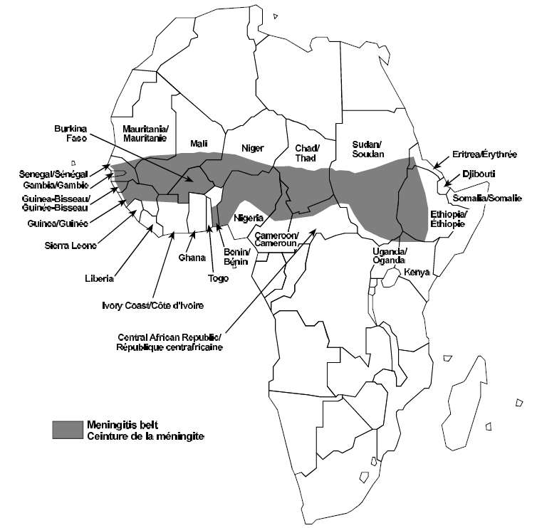 On appelle Ceinture de la méningite un ensemble de pays africains, de la Gambie à l'ouest de l'Ethiopie, situés peu ou prou sur l'équateur. En périodes d'épidémie, les taux d'infection y atteignent 800 cas pour 10.000 habitants, avec une mortalité pouvant dépasser 10%. © OMS/1998