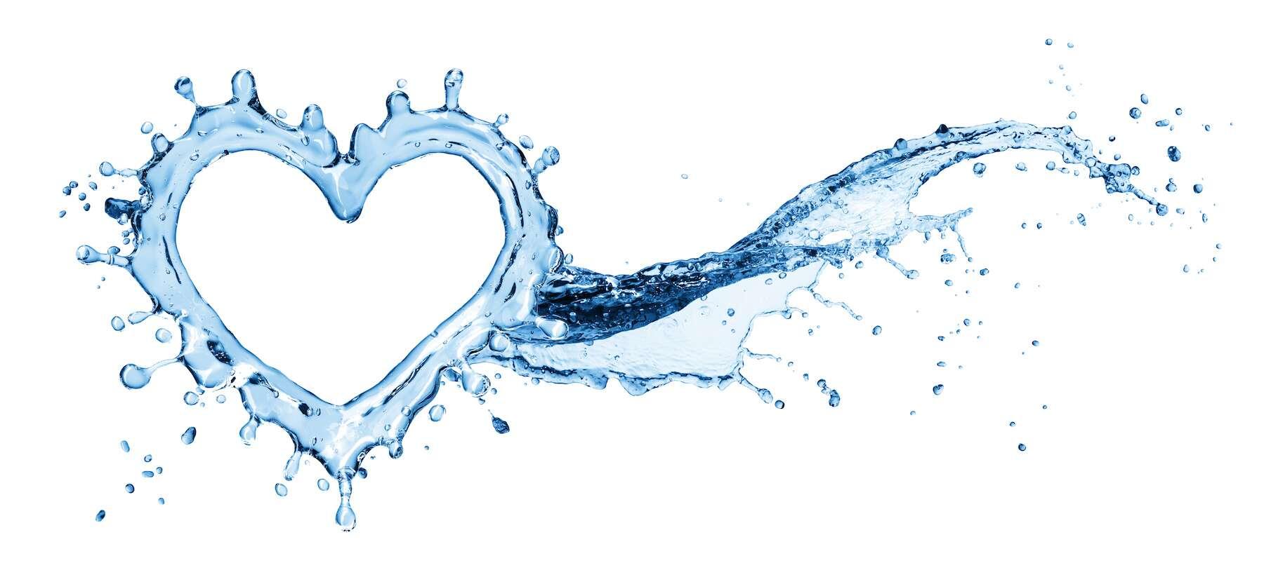Boire suffisamment d'eau aide à prévenir les troubles cardiovasculaires. © lotus_studio, Adobe Stock