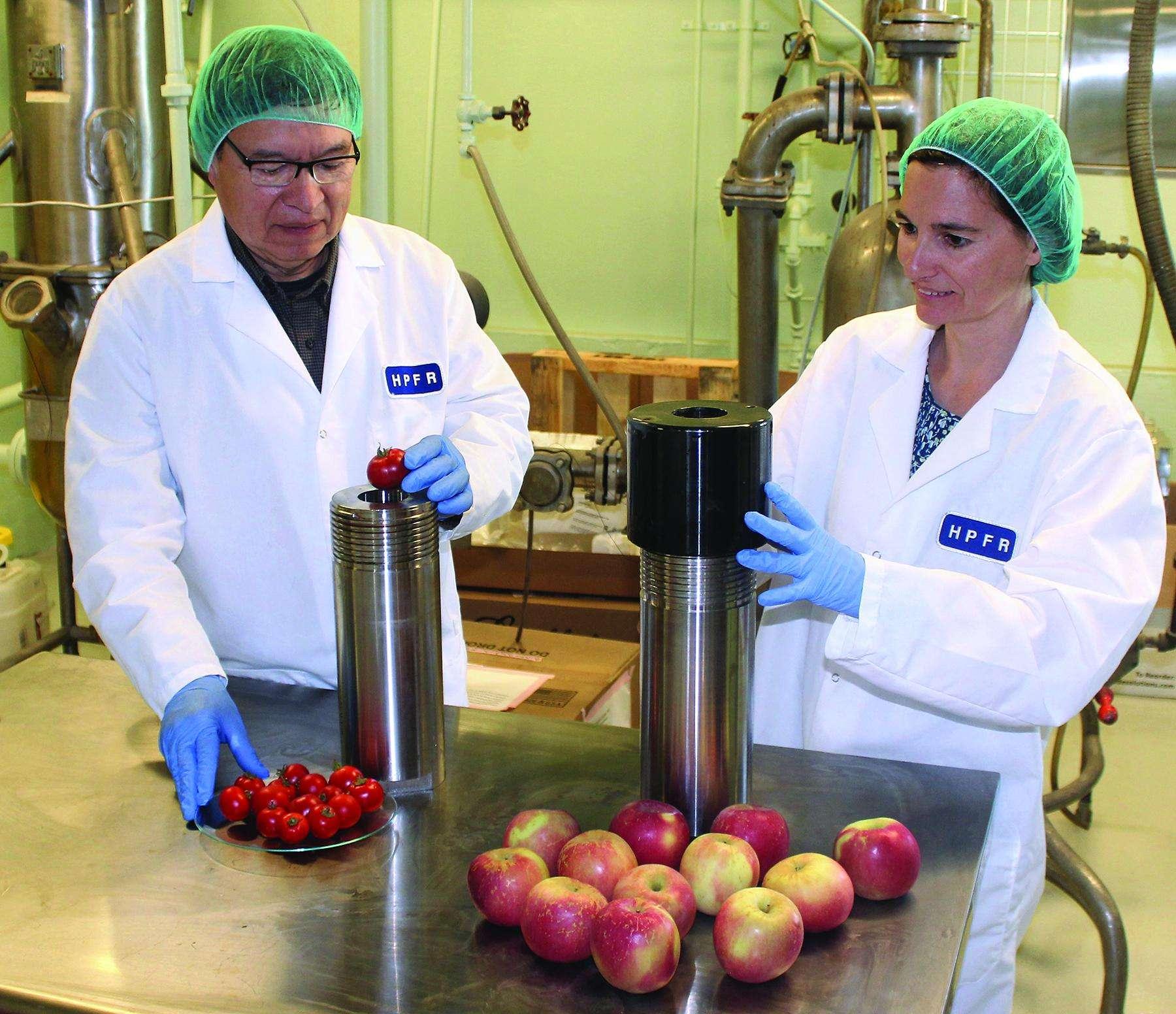 La congélation isochore permet de préserver les aliments frais tels que les pommes, les pommes de terre ou les tomates. © Département américain de l'Agriculture