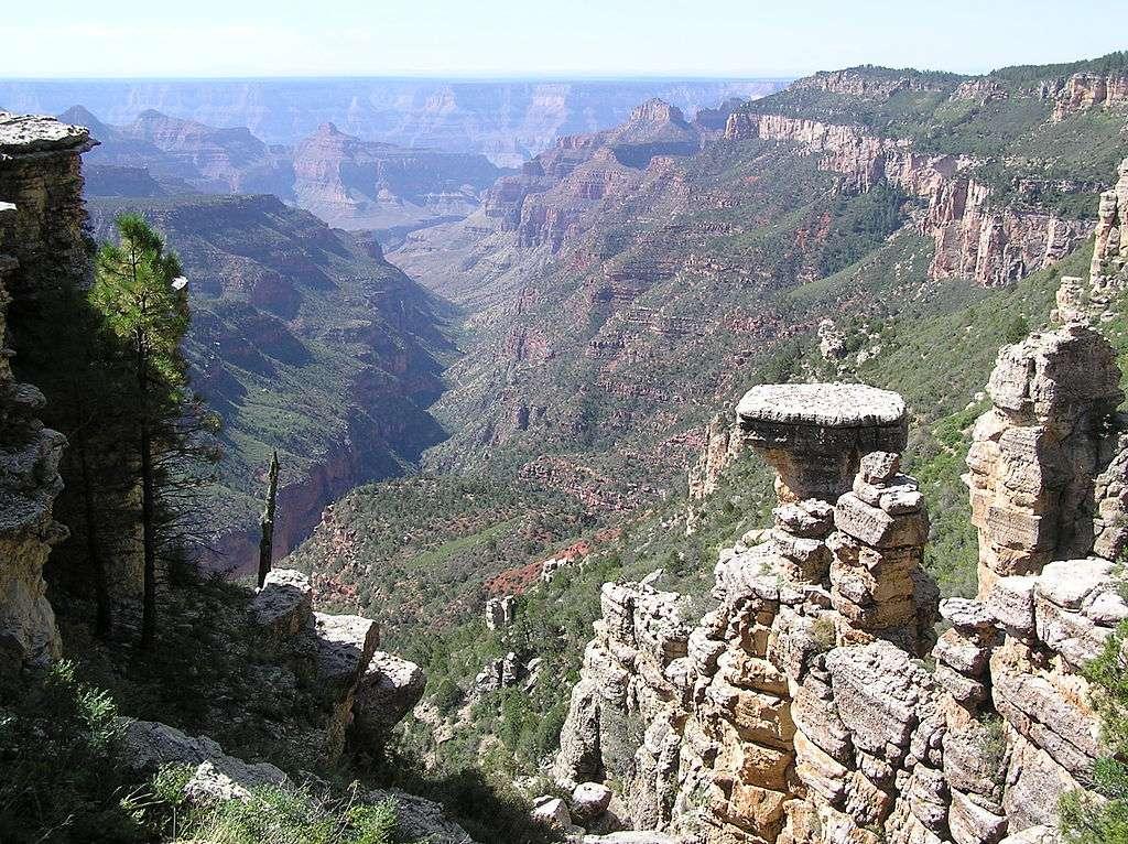 Vue du Grand Canyon en hélicoptère. Le choix de ce mode de locomotion donne un bon panorama grâce aux parois transparentes de l'appareil. © Scott Catron, Wikimedia Commons, cc by sa 3.0