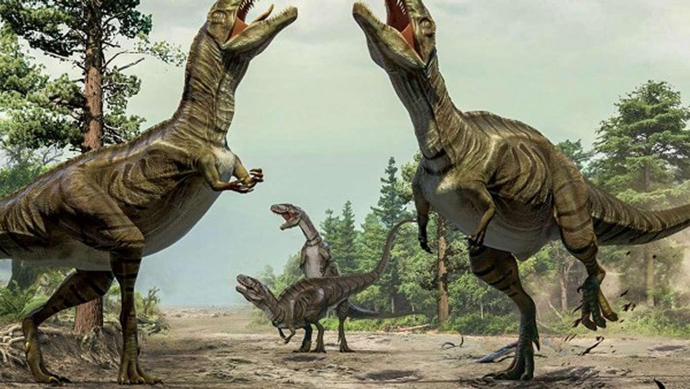 Les dinosaures théropodes, malgré leur taille souvent imposante, se lançaient sans doute dans des parades nuptiales qui précédaient l'accouplement. Même si cette scène est bien sûr une illustration d'artiste, elle repose sur des données recueillies par les paléontologues, sur des comparaisons raisonnées avec les oiseaux (dont les ancêtres étaient des cousins de ces grands bipèdes) et sur une minutieuse enquête menée dans le Colorado. © Xing Lida et Yujiang Han