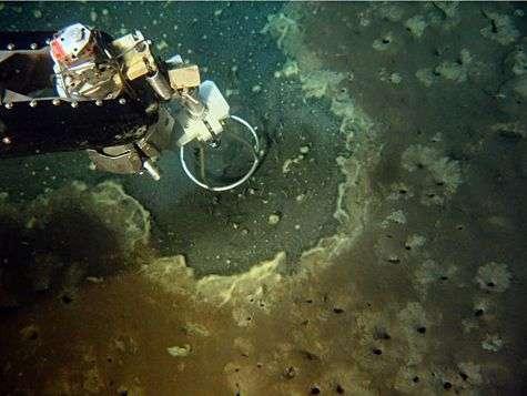 Prélèvement de gaz en 2007 par une équipe du Nautile. Crédit CNRS