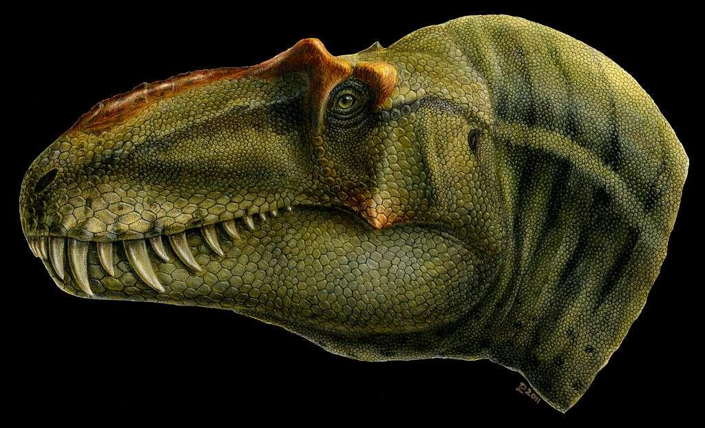 Le théropode Lythronax argestes a vécu voici 80 millions d'années dans les environnements côtiers subtropicaux de l'île-continent Laramidia. Ce dinosaure bipède y était très certainement un superprédateur. © Lukas Panzarin