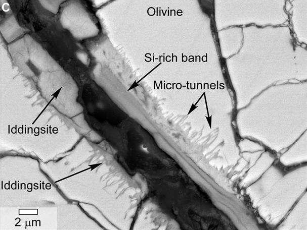 Coupe de la météorite martienne Yamato 000593 observée au microscope électronique. Des tunnels et microtunnels sont visibles dans la roche riche en minéraux hydratés, et ils évoquent des « bioaltérations » mises en évidence dans les verres basaltiques terrestres. La barre d'échelle vaut deux micromètres. © Nasa